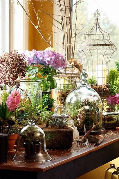 Indoor Garden Diy Fun Same Instructions Creating
