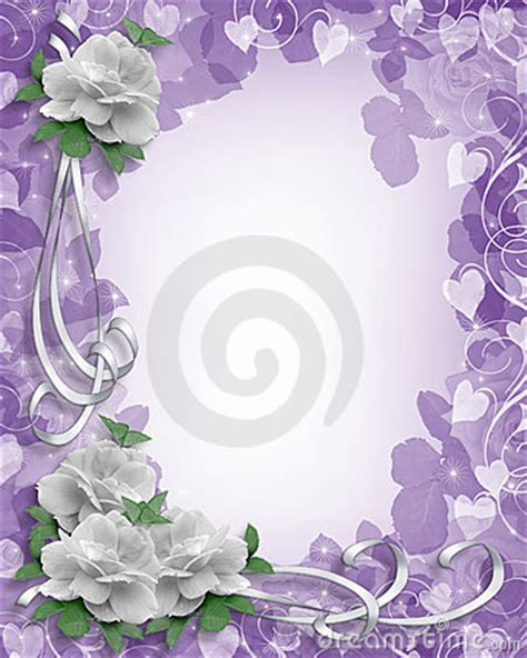 wedding border white roses  lavender stock