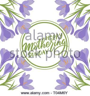 frame  flowers  text happy sunday stock photo