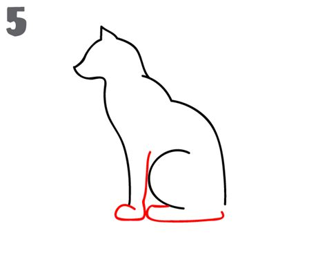 draw  cat step  step