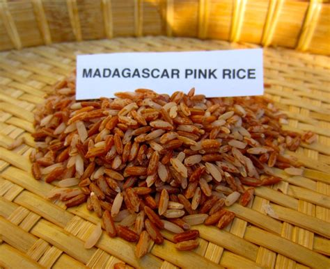 cuisine madagascar 15 best traditional malagasy cuisine images on