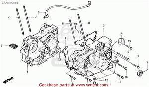 Honda Trx125 Fourtrax 125 1987  H  Usa Crankcase