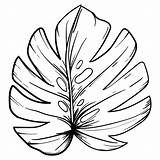 Leaf Printable Coloring Pages Maple Pattern Simple Oak Tracers Leaves Cut Template Patterns Printablee Fall Via sketch template