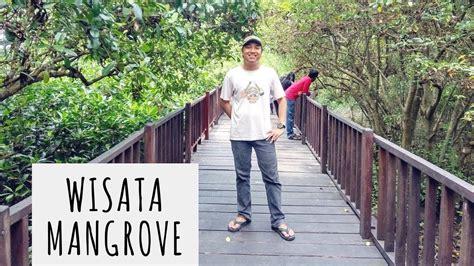 jalan jalan  wisata mangrove surabaya youtube