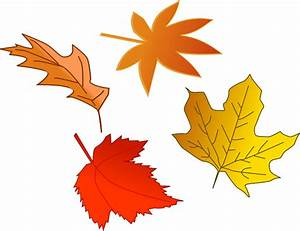 How about...: Fall Leaves Clip Art