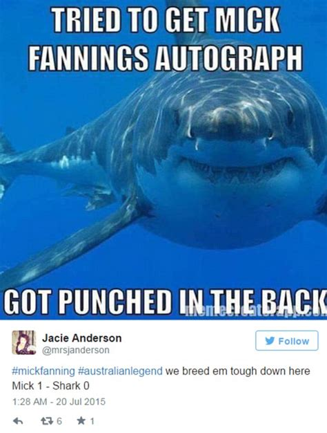 Shark Attack Meme - mick fanning s escape from shark attack pictured in hilarious memes daily mail online