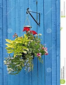 Hanging, Basket, On, Blue, Fence, Stock, Image
