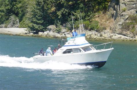 Fishing Boat Rentals Clearwater Fl by Boat Charters In Clearwater Fl Outdoor Adventures For