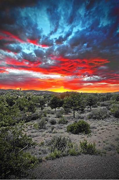Arizona Why Cool Really Knock Socks Sunset