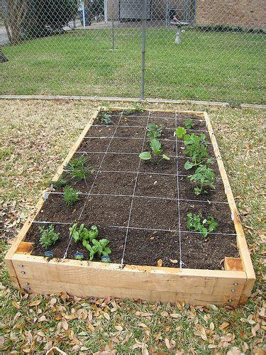 raised garden beds for vegetables vegetable garden raised beds and gardens on pinterest