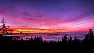 Backlit, Bright, Pink, Sunset, Landscape, 5k, Hd, Nature, 4k