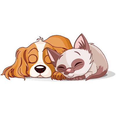 cats  dogs cartoon picture images