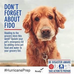 Fido Pet Shop : don 39 t forget fido ~ Markanthonyermac.com Haus und Dekorationen