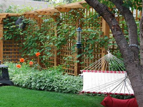 Garden Trellis Ideas  Home Interior Design