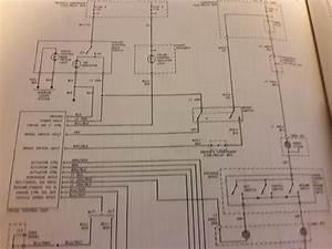 Horn  Wiring Issues - Honda-tech