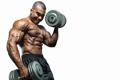 Muscle Bodybuilding Transparent Exercise Muscletech Creactor Pngimg