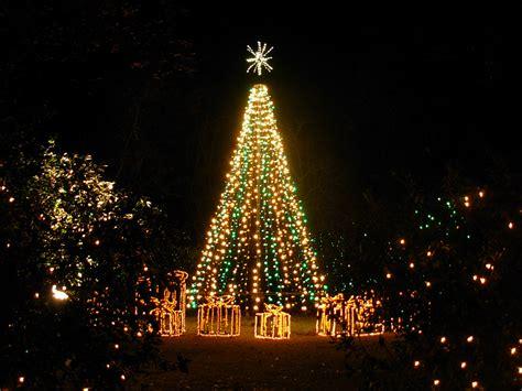 image christmas tree full desktop backgrounds