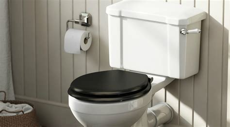 Water Closet History by From The Tin Bath To Indoor Loos A Brief History Of The
