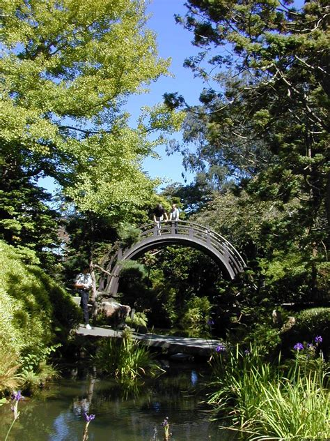 Japanischer Garten Golden Gate Park japanese tea garden japanischer garten im golden gate park