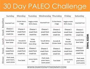 Diary of a Fit Mommy | 30 Day Paleo Challenge. Come with ...