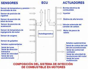 Composici U00f3n Del Sistema De Inyecci U00f3n De Combustible