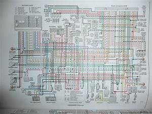 Wiring Harness For A Cbr929   27 Wiring Diagram Images