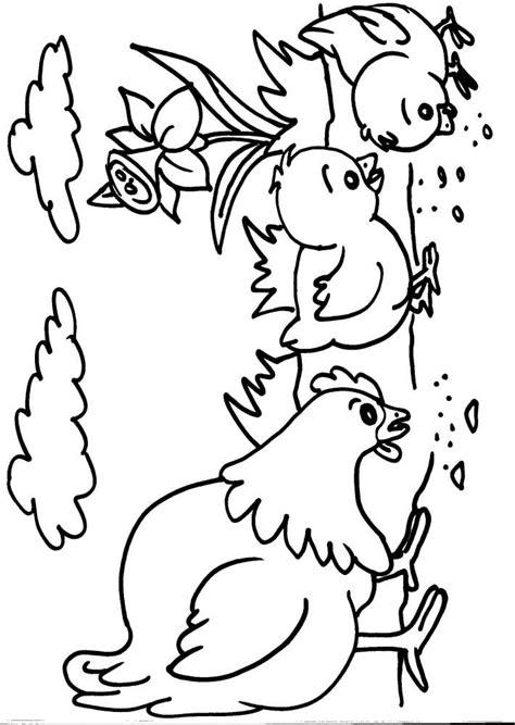 Animali Da Cortile Da Colorare by Disegni Pulcini Da Colorare Az Colorare
