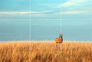 Rule of Thirds Design
