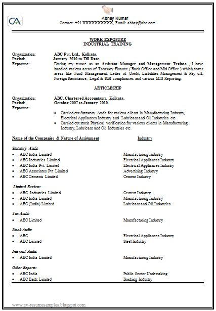 How To Make A Professional Cv Exles how to make or write a cv professional and 1