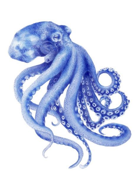 Kaya Kayu Painting Kit blue octopus watercolor painting archival print