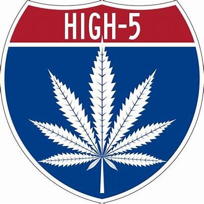 Cannabis Weed Marijuana Seeds Seed Medical Anniversary