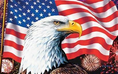 Eagle Flag American America Bald Symbols Definition