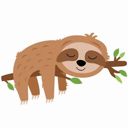 Sloth Clipart Sleeping Tree Svg Silhouette Cricut