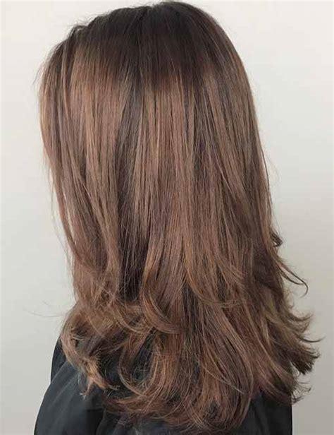 Lowlights For Light Brown Hair by 10 Highlights And Lowlights Styling Ideas For Light Brown Hair