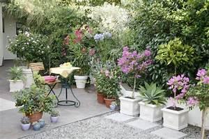 Kuebelpflanzen Fuer Terrasse : terrassen anlegen planen gestalten mein sch ner garten ~ Orissabook.com Haus und Dekorationen