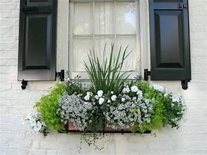 Blumenkästen Bepflanzen Ideen : balkonpflanzen in wei tipps f r eine einfarbige ~ A.2002-acura-tl-radio.info Haus und Dekorationen