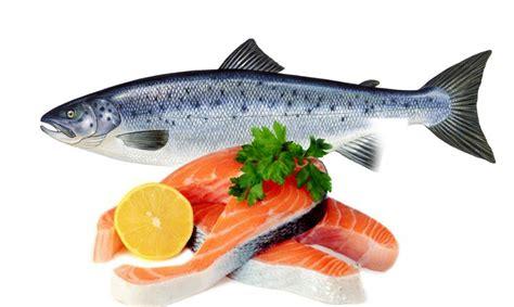 inilah 5 makanan penambah kesehatan reproduksi pria perkasa