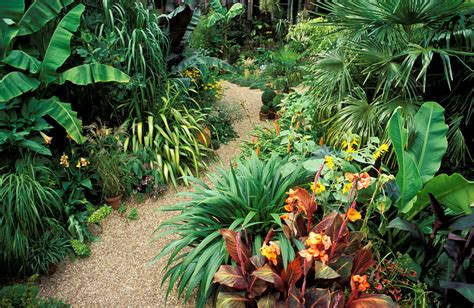 planning a tropical garden plan a tropical garden with tropical plants at home homes innovator