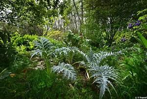 Comment Affuter Un Foret : stage for t jardin permaculture ~ Dailycaller-alerts.com Idées de Décoration