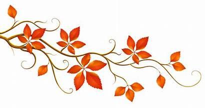 Clipart Autumn Decoration Leaves Branch Decorative Clipground