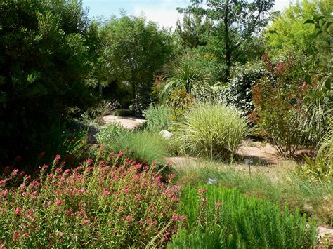 garden shrubs file springs preserve garden plants jpg wikimedia commons