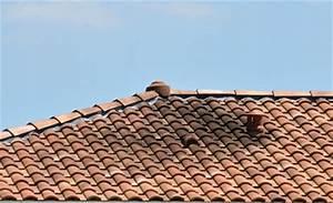 Les causes du verdissement des tuiles sur une toiture ventilation
