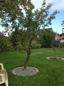 Bäume Verschneiden Obstbäume : b ume pflanzen nikolaus lueneburg de ~ Lizthompson.info Haus und Dekorationen
