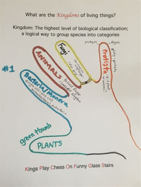 science  kingdoms  living  science biology