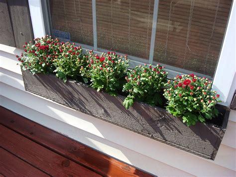 Window Planters by 12 Gorgeous Diy Window Box Planters