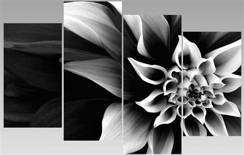 details about large abstract black white flower