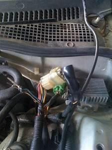 Crx D16a6 Engine Harness - Honda-tech