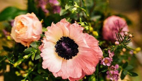 Soli pa solim floristes vadībā: pavasarīga ziedu ...