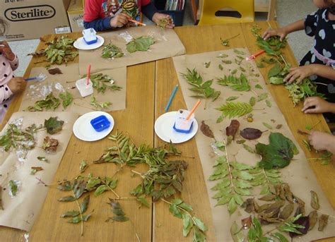 more than a collage collage reggio and forest school 685 | 7a4c4c5d512790b1577956545eb93ca2
