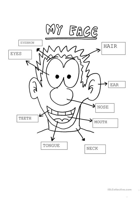My Face Worksheet  Free Esl Printable Worksheets Made By Teachers